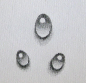 A Wee Tutorial How To Draw A Water Droplet Design Newyorkcom