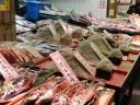 nishiki-fish-market2