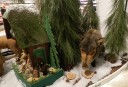 dodenhof-plush-boar1