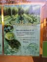 tomato-greenhouse2
