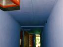 hallway-bat1