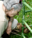 sloth-baby4