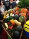 awardwinning-gourds