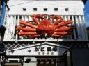 crabatorium-crab1