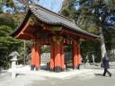 ginkgo-tree-shrine1