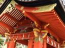 ginkgo-tree-shrine2