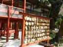 ginkgo-tree-shrine8