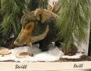 dodenhof-plush-boar2