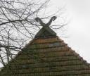 fischerhuder-roof