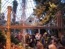 botanical-garden1