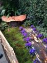 botanical-garden13