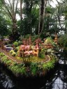 botanical-garden8