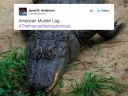 good-thing-the-internet-is-not-allowed-to-name-animals-photos-1